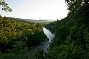 Widok z tarasu na smerek oraz dolinę rzeki San